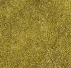 Herbage champ de blé